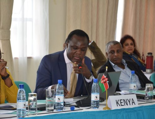 East African countries are now racing against time to to establish a Regional Qualifications framework to support free movement of people and skills and also to facilitate  recognition of Qualifications from refugee communities.